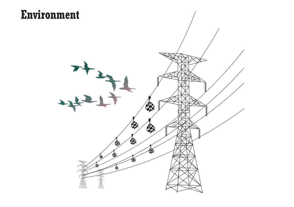 Mitigation of Birds and Power Lines